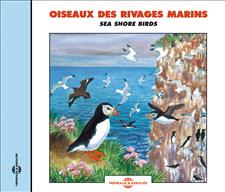 OISEAUX DES RIVAGES MARINS