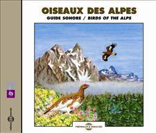OISEAUX DES ALPES - GUIDE SONORE