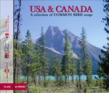 USA and CANADA