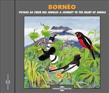 BORNEO - VOYAGE AU COEUR DES JUNGLES